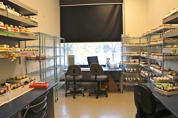 Image 2 - Drosophila Facility